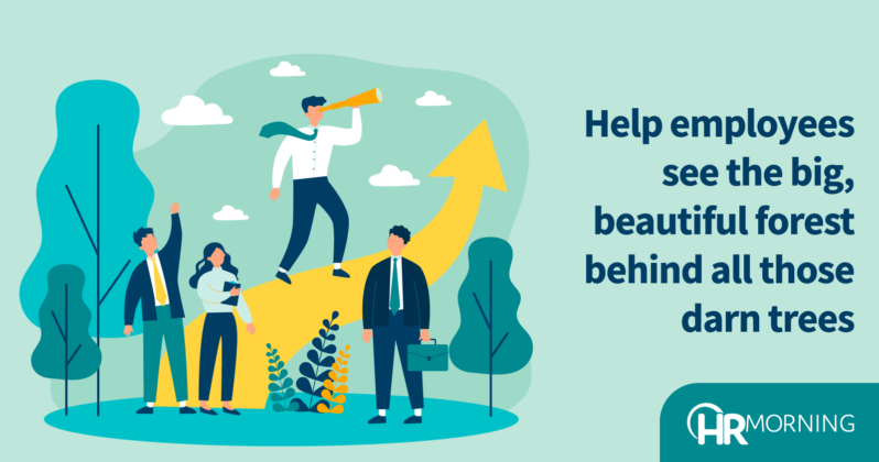 Help Employees See The Big Beautiful Forest Behind All Those Darn Trees