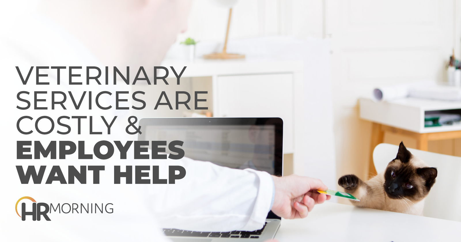 Veterinary Services Are Costly & Employees Want Help